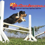 Dog Friendly Tucson Pets Welcome in AZ