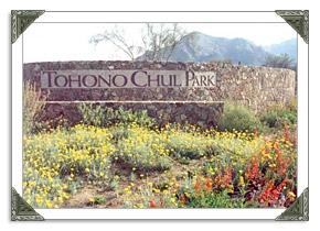Tohono Chul Park in Tucson AZ