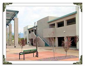 Tucson Pest Control Services in Arizona