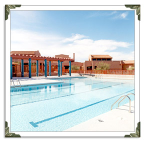Tucson Pool Companies Builders In Tucson Swimming Pool Company Builder Best Businesses Top