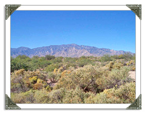 Safford AZ Real Estate MLS Listings of Homes and Land For Sale in Arizona