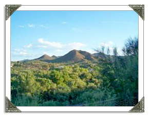 Kearny AZ Real Estate MLS Listings of Homes and Land For Sale in Arizona
