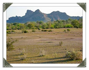 Arizona City AZ Real Estate MLS Listings of Homes and Land For Sale in Arizona