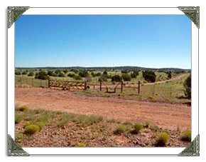 Snowflake AZ Real Estate MLS Listings of Homes and Land For Sale in Arizona