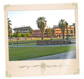 Arizona College Living