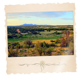 Arizona Vacant Land For Sale
