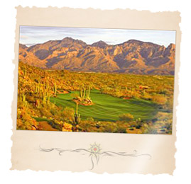 Stone Canyon Arizona Community Home Prices in Oro Valley, AZ