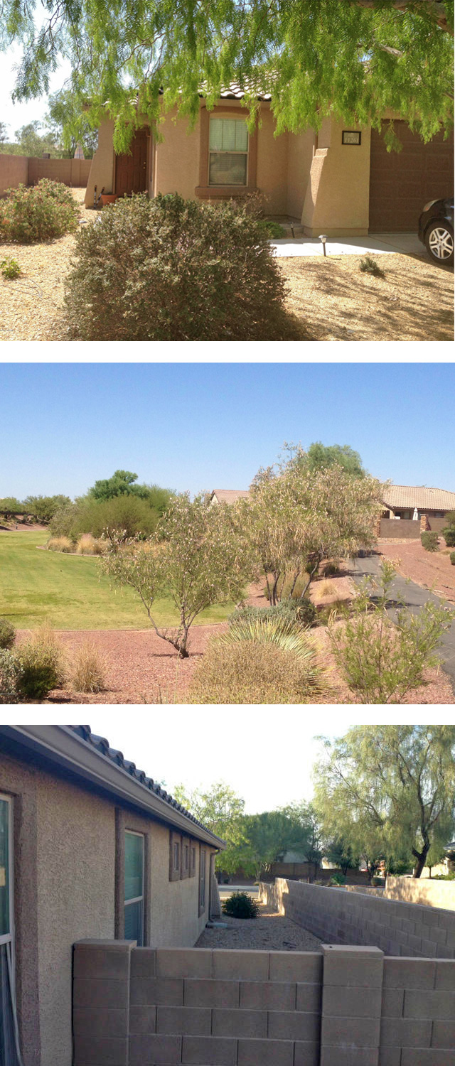 MyOwnArizona™ Residential Real Estate Sales Director - Bob Helmig – Tucson MLS 21319847